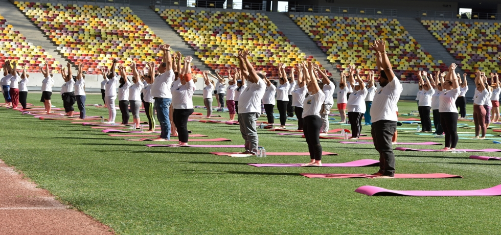 International Day of Yoga 2019 celebrated in Romania